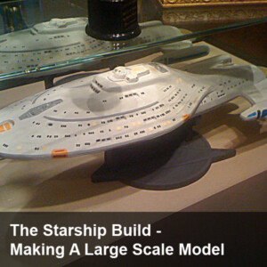 The Starship Build