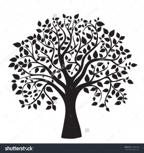 stock-vector-black-tree-silhouette-isolated-on-white-background-vector-102856430