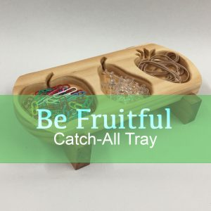 Build The Be Fruitful Catch-All Tray!